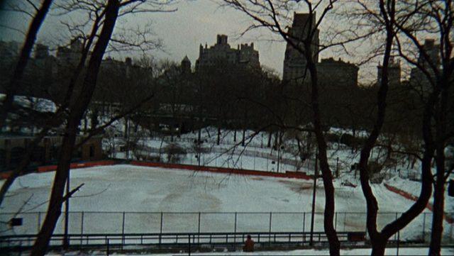 Melancholisch eingefärbter Blick auf einen winterlichen Park.