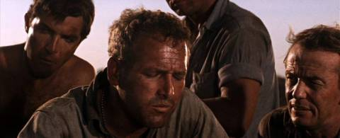Cover 'Cool Hand Luke (1967)'