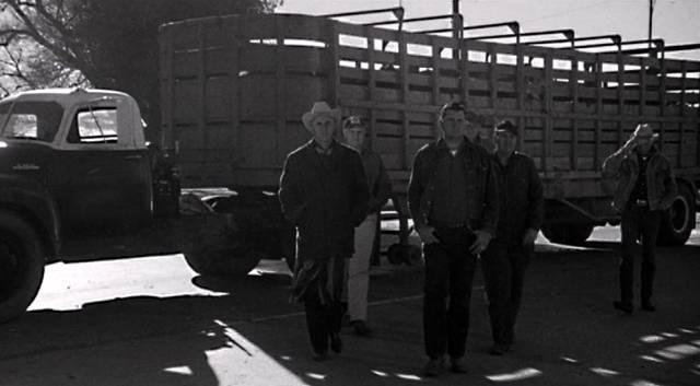 eine Gruppe erwachsener Männer vor einem Viehtransport-Lkw