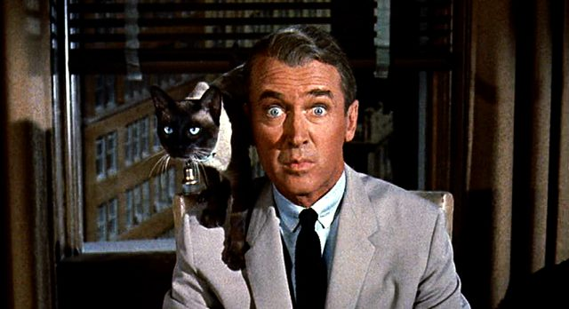 Shepherd Henderson (James Stewart) vor einem Fenster mit einer Katze auf der rechten Schulter