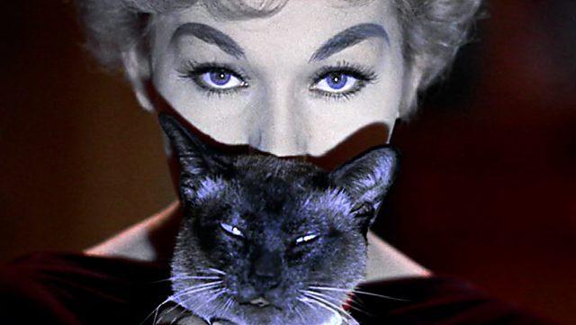 Kim Novak als Gil Holroyd mit Katze, Copyright: Columbia