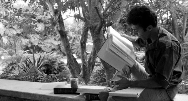 Lenny Bruce (Dustin Hoffman) sitzt auf einer Mauer und liest in einem Gesetzbuch