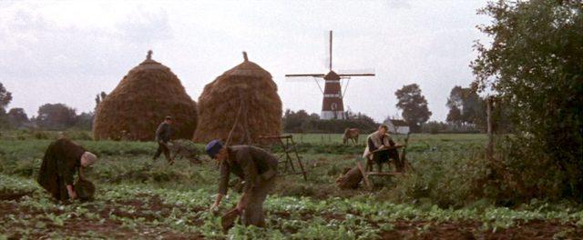 Feldarbeiten, im Hintergrund befindet sich eine Mühle; und van Gogh porträtiert die Szenerie