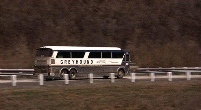 """Profilaufnahme eines """"Greyhound""""-Busses in voller Fahrt"""