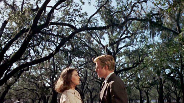 Alva Starr (Natalie Wood) und Owen Legate (Robert Redford) stehen sich im Wald gegenüber, Copyright: Paramount