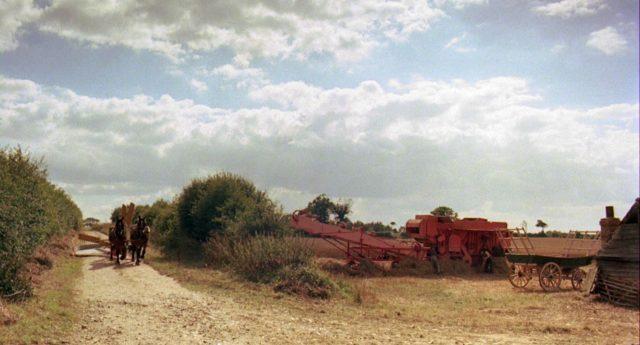 Blick auf die agrarische Feldarbeit mit Landmaschinen, links trotten zwei Pferde heran.