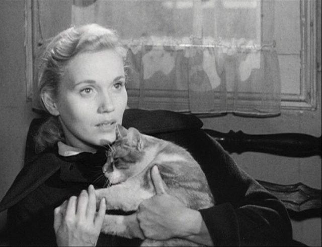 Close-up von Eva Marie Saint als Edie Doyle mit einer Katze auf dem Arm.
