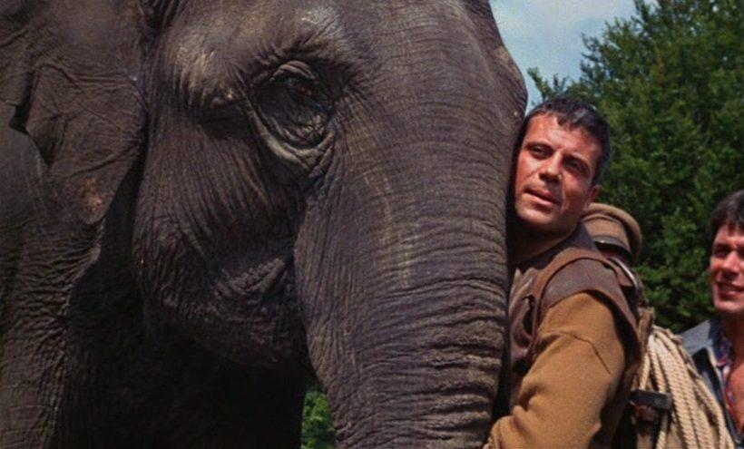 Szene aus 'Hannibal Brooks(1969)', Copyright: MGM, Michael Winner Ltd.