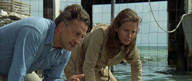 Szene aus 'The Day of the Dolphin(1973)'