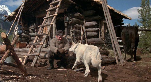 Johnson hockt vor seiner Blockhütte unf füttert den Hund.