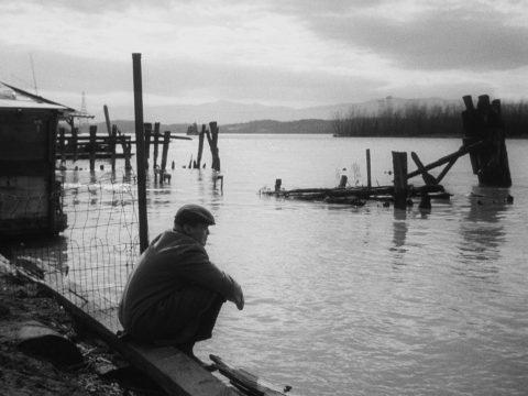 Szene aus 'Wenig Chancen für morgen(1959)', Bildquelle: Wenig Chancen für morgen(1959), HarBel Productions
