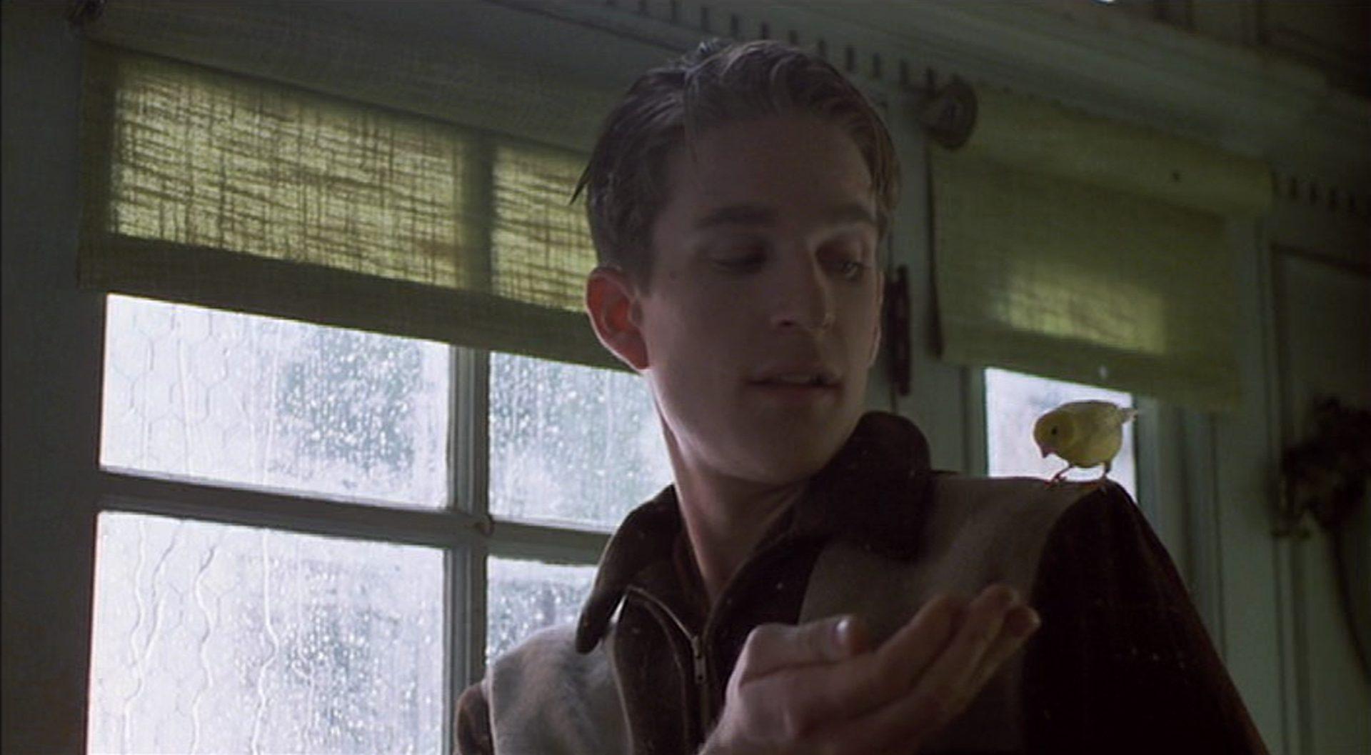 Matthew Modine als Birdy mit einem Kanarienvogel auf der Schulter.