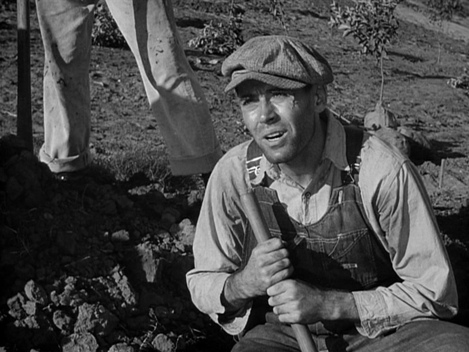 Henry Fonda als Tom Joad bei der Feldarbeit.